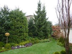 Stepping Stones, Outdoor Decor, Plants, Home Decor, Stair Risers, Flora, Interior Design, Home Interior Design, Plant