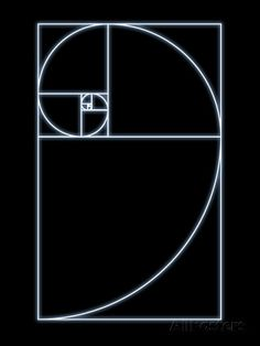 Fibonacci Spiral, Artwork Prints by SEYMOUR at AllPosters.com