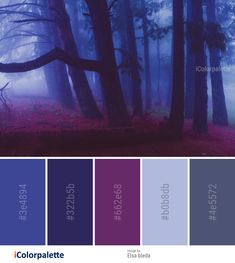 Color Palette Ideas from Nature Forest Purple Image aesthetic color schemes 17 Color Palette inspirations from Elsa bleda Lila Palette, Blue Colour Palette, Color Palate, Nature Color Palette, Plum Colour, Palette Art, Lavender Color, Purple Color Schemes, Color Schemes Colour Palettes