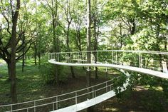 """A Path in the Forest"" -- temporary installation in the Kadriorg Park near Tallinn, Estonia."