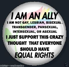 I AM AN ALLY BUTTON / MAGNET GAY PRIDE FRIEND QUEER GLBT LGBTI PROTEST TAKEI