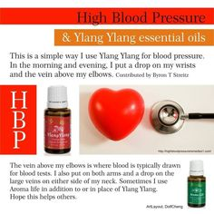 Aroma Life & Ylang Ylang Young Living Essential Oils for High Blood Pressure. Essential Oils Guide, Therapeutic Grade Essential Oils, Essential Oil Uses, Doterra Essential Oils, Natural Essential Oils, Yl Oils, Young Living Oils, Young Living Essential Oils, Diabetes