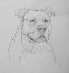 Exciting Learn To Draw Animals Ideas. Exquisite Learn To Draw Animals Ideas. Animal Sketches, Animal Drawings, Drawing Sketches, Art Drawings, Cãezinhos Bulldog, Creature Drawings, Love Illustration, Dog Paintings, Animal Design