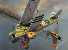 Spain civil war - Fiat Cr 32 (Falco) vs Polikarpov I-16 (Rata)