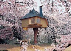 Casa da árvore. <3