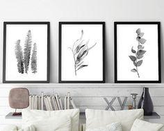 Set of 3 Botanical Prints