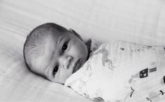 baby Olivia swaddled in our once upon a time organic cotton muslin swaddling blanket