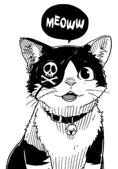 Leiji Matsumoto Pirate Cat