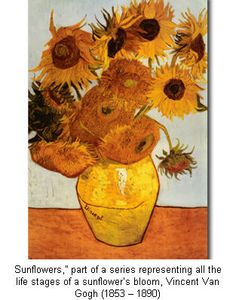 Sunflowers Vincent vanGogh. A Classic!