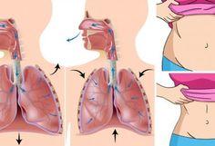Conoce como las hormonas controlan tu peso y cual es su repercusión en la acumulación de grasa en la zona abdominal y otras partes del cuerpo. Aprende como