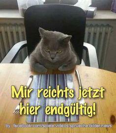 sprüche #lustigesding #werkennts #fail #lustigesbild #photooftheday #schwarzerhumor