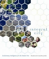 Integral City  Evolu
