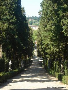 A path at Bobili Gardens in Florence, Italy