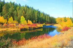 Oregon fall season