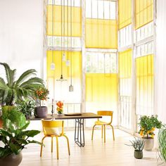 Sonnenschutz für Terrasse, Balkon, Fenster und Garten - [SCHÖNER WOHNEN]