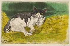 Le Vieux Chat, Theophile Steinlen, 1902