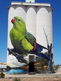 D'Vate – South Australia Silo Art Trail –Waikerie were the twenty fifth silos to be completed in Photo Credit Janet Gregory Street Art News, Murals Street Art, 3d Street Art, Art Mural, Street Art Graffiti, Street Artists, Graffiti Artists, Urban Street Art, Art And Illustration
