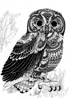 Zentangle art Owl by iain macarthur . so awesome. Ink Illustrations, Illustration Art, Graffiti Kunst, Doodles Zentangles, Amazing Art, Awesome, Amazing Drawings, Art Photography, How To Draw Hands