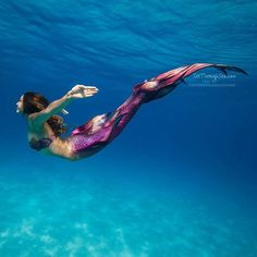 Have you ever dreamed of having photos like this? Our photographers at are offering an incredible package deal for the Hawaiian Mermaid Experiences round Siren Mermaid, Mermaid Cove, Mermaid Art, Mermaid Paintings, Fantasy Mermaids, Real Mermaids, Mermaids And Mermen, Underwater Photos, Underwater Photography