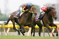 """Buena-Vista VS Red-Desire """"The Japanese Oaks Stakes 2009"""""""
