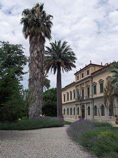 Orto Botanico Botanical Gardens in Pisa, Italy Pisa, Toscana, Lucca, Holiday Destinations, Colorado, Mansions, House Styles, Italia, Aspen Colorado
