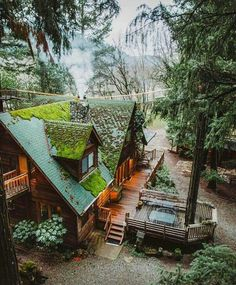 Forest Cabin, Forest House, Tree Forest, Cabins In The Woods, House In The Woods, Cottage In The Woods, Cabin Homes, Log Homes, Tiny House
