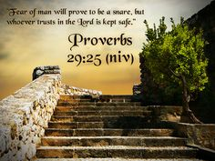 christian wallpapers with bible verses | Proverbs 29:25 Bible Verse HD Wallpaper | Christian Wallpapers