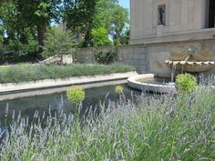 Rodin Museum, Philadelphia, PA   A multi-year renovation of the Rodin Museum's gardens was completed in 2011. The renovation accommodated new native plantings, including lavender, thyme, and yarrow, and allowed for the return of Rodin's sculptures to the garden after years inside the museum. http://tclf.org/landscapes/rodin-museum