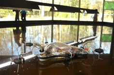 If You Watch One Video Of An Algae-Eating Autonomous Robot Today, Make It This One