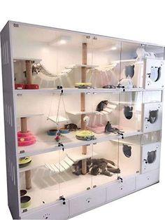 Solid Wood Cat Cage/cags Cats House/cat cage/Cat House/Cat Villa/Cat B – Squirrely Cat Daycare, Cat Hotel, Cat Cages, Pet Boarding, Wood Cat, Pet Resort, Cat Room, Pet Furniture, Pet Shop