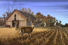 zachwildlifeart.com | Heading for Cover - Whitetail | Larry Zach Wildlife Art