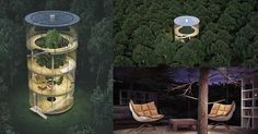 The most incredible treehouse you have ever seen