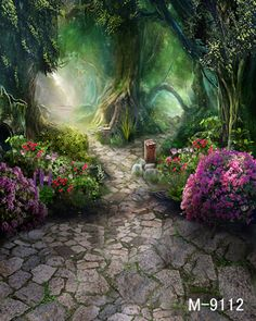Fantasy Forests Sunlight Alley Wedding Children Photography Background Vinyl Cloth Computer Print Studio Backdrop forest M 9112-in Background from Consumer Electronics on Aliexpress.com   Alibaba Group