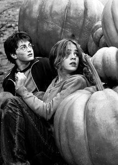 Best moment in Harry Potter history.For us Harry Potter and Hermione Granger fans