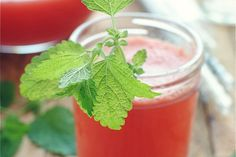 Cool Off With Watermelon Spritzers - foodista.com