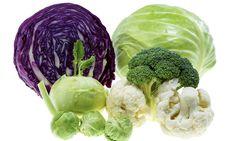 Kål Frisk, Cabbage, Broccoli, Vegetables, Mat, Food, Essen, Cabbages, Vegetable Recipes