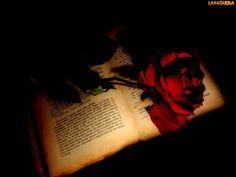 Mundos secretos y mágicos: Pequeña historia del inicio oscuro