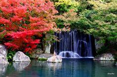 chuchuさんの日本庭園 - 写真共有サービス 「写真部」 byGMO