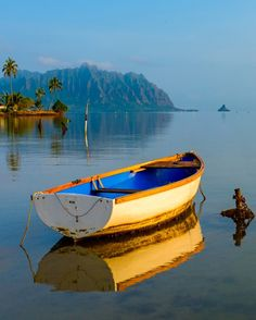 Un joli bateau. Beautiful Places, Beautiful Pictures, Boat Art, Old Boats, Boat Painting, Wooden Boats, Pictures To Paint, Fishing Boats, Belle Photo