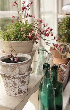 this is so delicate and I love the pots