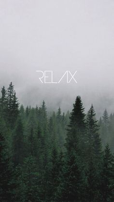 relax, wallpaper, and forest image Tumblr Wallpaper, Screen Wallpaper, Cool Wallpaper, Mobile Wallpaper, Nature Wallpaper, Wallpaper Quotes, Mobile Backgrounds, Wallpaper Backgrounds, Phone Backgrounds Tumblr