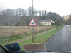 nunca había visto esta señal con un pato... Escocia