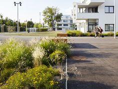Sidewalk, Homes, Pavement