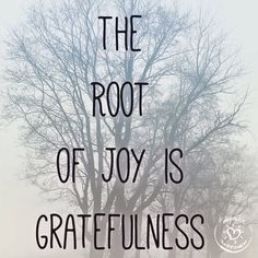Be Grateful for all things : )