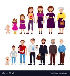 Male and female Life cycle from childhood to old age vector flat illustration. Cheerful cute cartoon characters isolated on white background for infographic design and web graphic. Human Life Cycle, Cycle For Kids, Living And Nonliving, Kids Planner, Flat Illustration, Stock Illustrations, Cute Cartoon Characters, Baby Development, Life Cycles