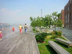 W Architecture Tide Point - fog widget