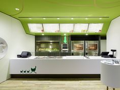 Fresh Restaurant Design Displaying Bold Natural Colours and Fun Forest Graphics