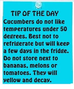 Cucumbers do not like temperatures under 50 degrees. Best not to refrigerate but will keep a few days in the fridge. Do not store next to bananas. Melons or tomatoes. They will yellow and decay. Cucumber On Eyes, Kitchen Helper, Tip Of The Day, Thing 1, Simple Life Hacks, Food Facts, Baking Tips, Baking Secrets, Bread Baking