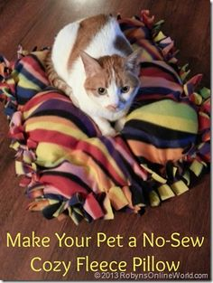 Make your pet a no-sew fleece pillow