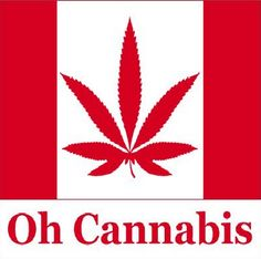 """New Poll: Canada's Wealthiest Support Marijuana Legalization By 74% -- The worlds """"emperors"""" are being found naked and clueless."""
